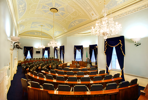 Women in Elections – Seanad Elections 2020